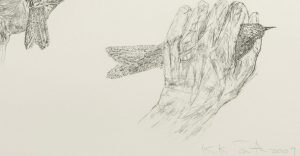 kiki-smith-untitled-2009-signature